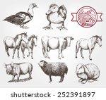 farm animals. set of vector... | Shutterstock .eps vector #252391897