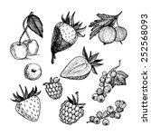 hand drawn vector illustration. ... | Shutterstock .eps vector #252568093