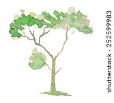 a stylized tree hand painted... | Shutterstock .eps vector #252599983