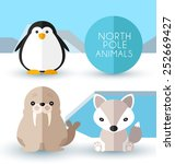North Pole Animals   Vector...