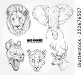 vector set  wild animals... | Shutterstock .eps vector #252676507
