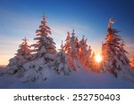 Snowy Trees On Winter Mountains