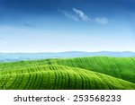green field and blue sky. italy ... | Shutterstock . vector #253568233