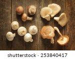 Different Kind Of Mushrooms On...