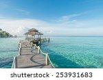 tropical hut and wooden bridge... | Shutterstock . vector #253931683