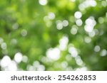 green nature blur bokeh... | Shutterstock . vector #254262853