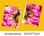 tear up  creative photo design...   Shutterstock . vector #254377123