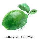 lime vector logo design...   Shutterstock .eps vector #254394607