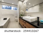 modern luxury bathroom  in... | Shutterstock . vector #254413267