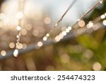 april showers   raindrops... | Shutterstock . vector #254474323