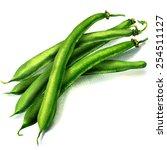 green beans on white background | Shutterstock . vector #254511127