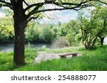 Spring Landscape. Bench Under ...