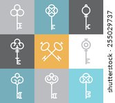 vector key logos and signs in... | Shutterstock .eps vector #255029737
