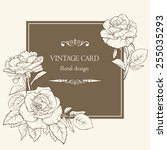 vintage elegant vector card... | Shutterstock .eps vector #255035293