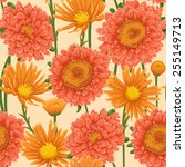 floral pattern with pink and... | Shutterstock .eps vector #255149713