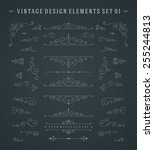 vintage vector swirls ornaments ... | Shutterstock .eps vector #255244813