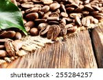 coffee beans and green leaf  | Shutterstock . vector #255284257