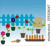 outdoor gardening tools and... | Shutterstock . vector #255328267