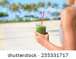 vegetable green detox cleanse... | Shutterstock . vector #255331717