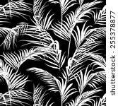 black and white palm leaves...