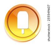 ice cream icon | Shutterstock .eps vector #255549607