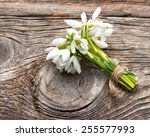 Snowdrops Bunch On Wooden...