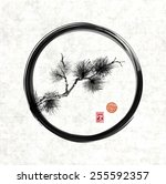 pine tree branch in black enso... | Shutterstock .eps vector #255592357