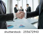hand shake of businessman | Shutterstock . vector #255672943