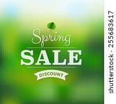spring sale poster with blur... | Shutterstock .eps vector #255683617