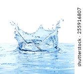 water splash over white... | Shutterstock . vector #255916807