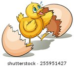 An Egg Hatching On A White...
