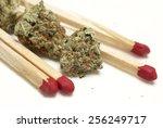 marijuana  | Shutterstock . vector #256249717