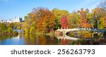 new york city   central park... | Shutterstock . vector #256263793