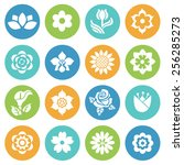 flower icon set  flat style... | Shutterstock .eps vector #256285273