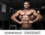 bodybuilder in the gym | Shutterstock . vector #256332607