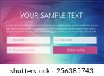 order form with input fields... | Shutterstock .eps vector #256385743