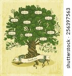 Genealogical Tree On Old Paper...