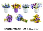Spring Flowers Set. Isolated O...