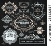 vector vintage collection ... | Shutterstock .eps vector #256633897