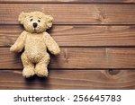 The Teddy Bear On Wooden Table