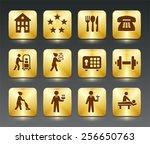 hotel services on black  bevel... | Shutterstock .eps vector #256650763