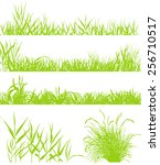grass collection | Shutterstock .eps vector #256710517