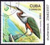 Small photo of CUBA - CIRCA 1989: A stamp printed by CUBA shows, Agamia agami birds series, circa 1986