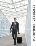 businessman walking in urban... | Shutterstock . vector #256882633