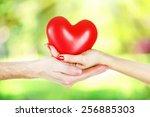 loving couple holding heart in... | Shutterstock . vector #256885303