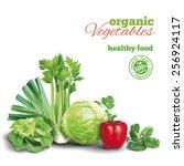 vegetables composition on white....   Shutterstock .eps vector #256924117