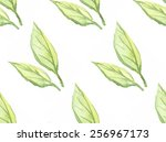 hand drawn watercolor tea... | Shutterstock .eps vector #256967173