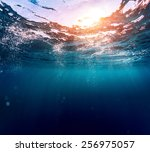 underwater view of the sea... | Shutterstock . vector #256975057