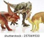 isolated dinosaur in white... | Shutterstock . vector #257069533