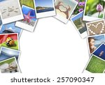 collage of nature photos | Shutterstock . vector #257090347